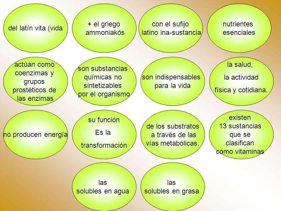 del latín vita (vida + el griego. ammoniakós. con el sufijo. latino ina-sustancia. nutrientes. esenciales.