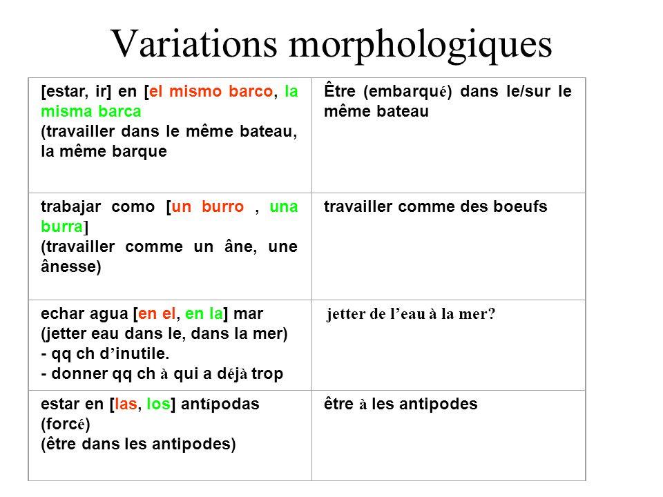 Variations morphologiques