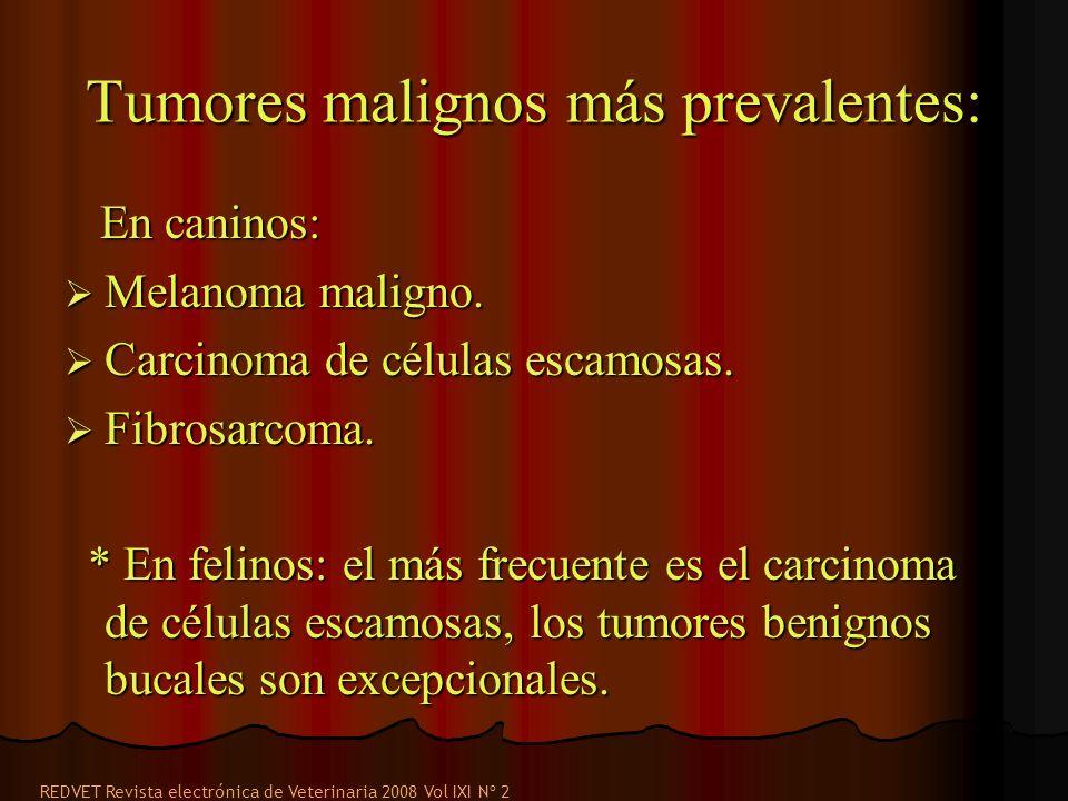 Tumores malignos más prevalentes:
