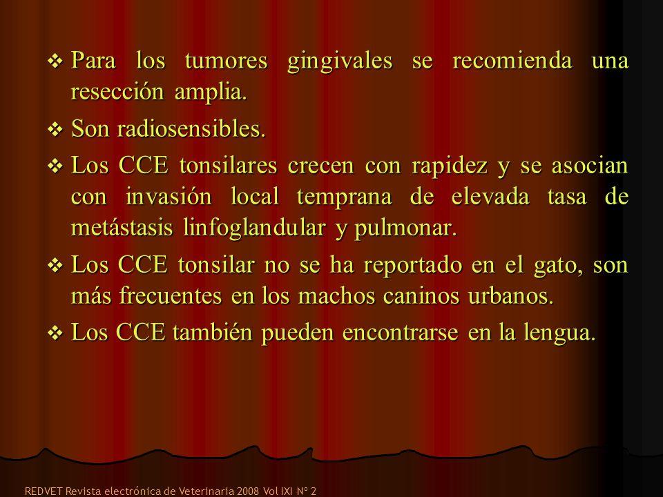 Para los tumores gingivales se recomienda una resección amplia.