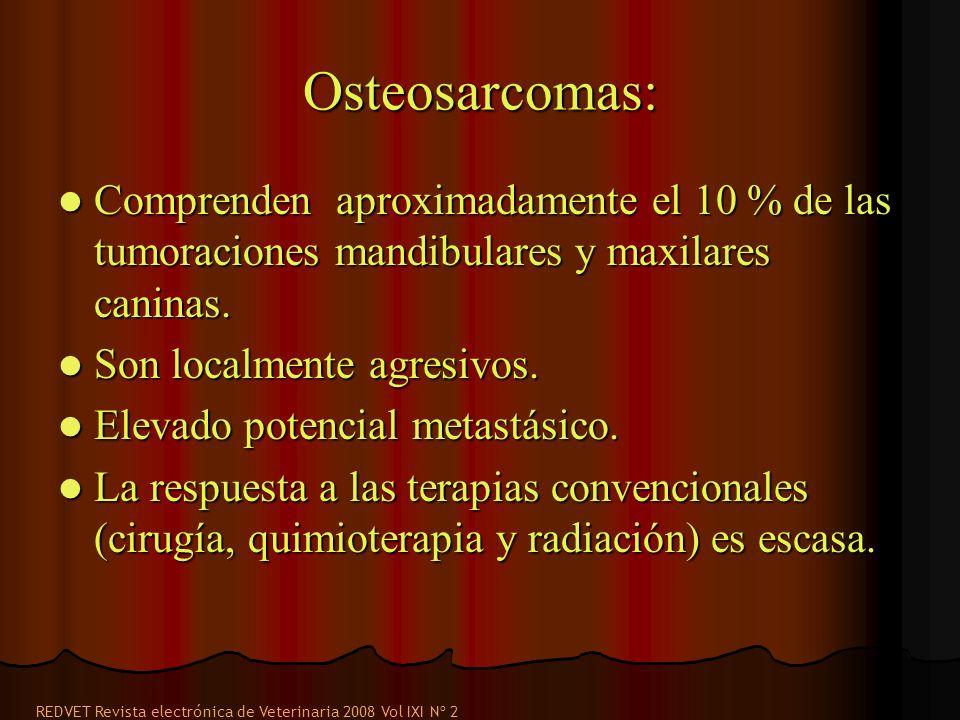 Osteosarcomas: Comprenden aproximadamente el 10 % de las tumoraciones mandibulares y maxilares caninas.