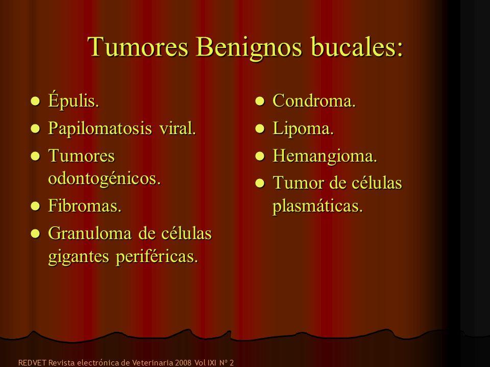 Tumores Benignos bucales: