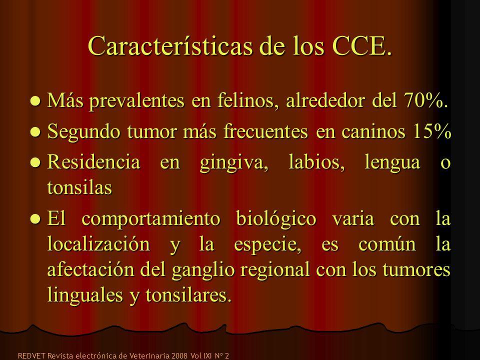 Características de los CCE.