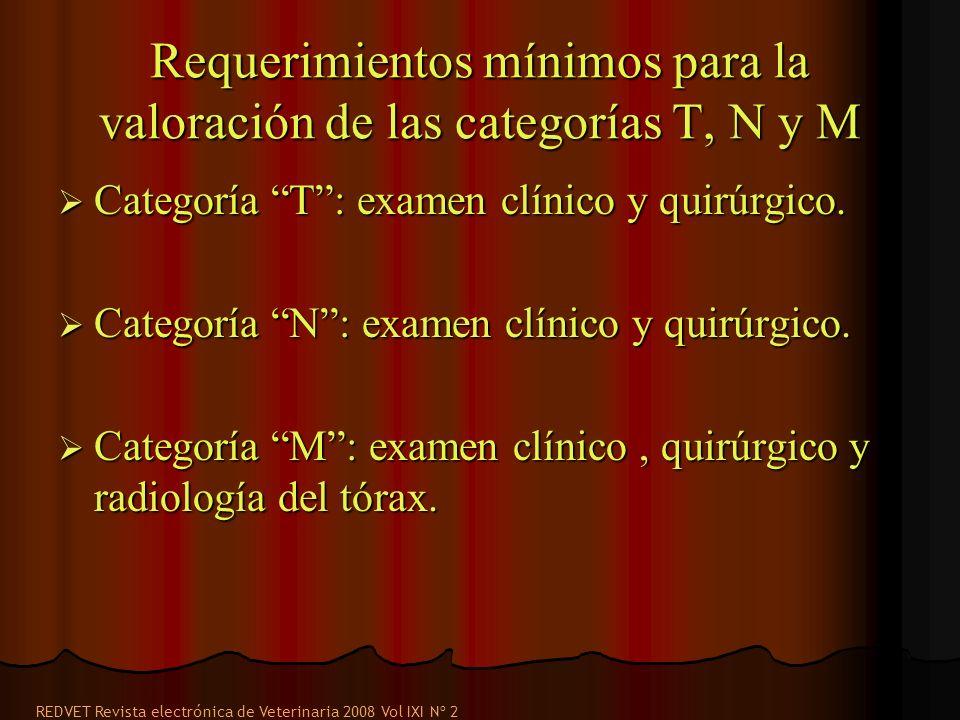 Requerimientos mínimos para la valoración de las categorías T, N y M