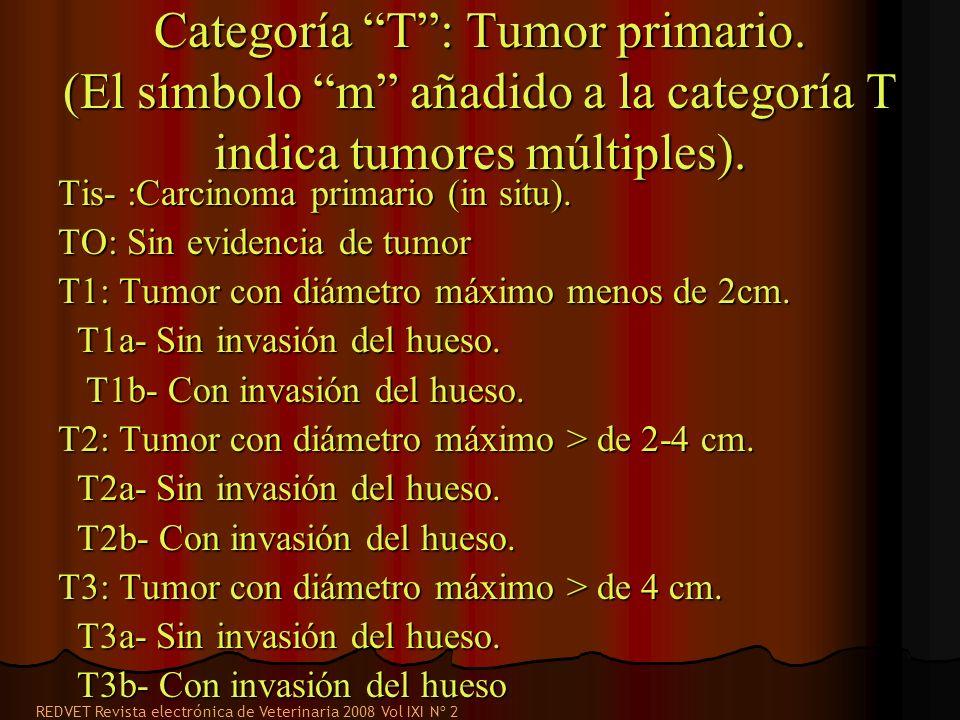 Categoría T : Tumor primario