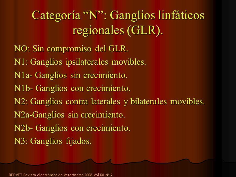 Categoría N : Ganglios linfáticos regionales (GLR).
