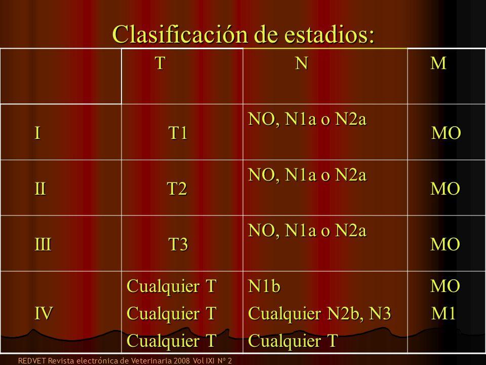 Clasificación de estadios: