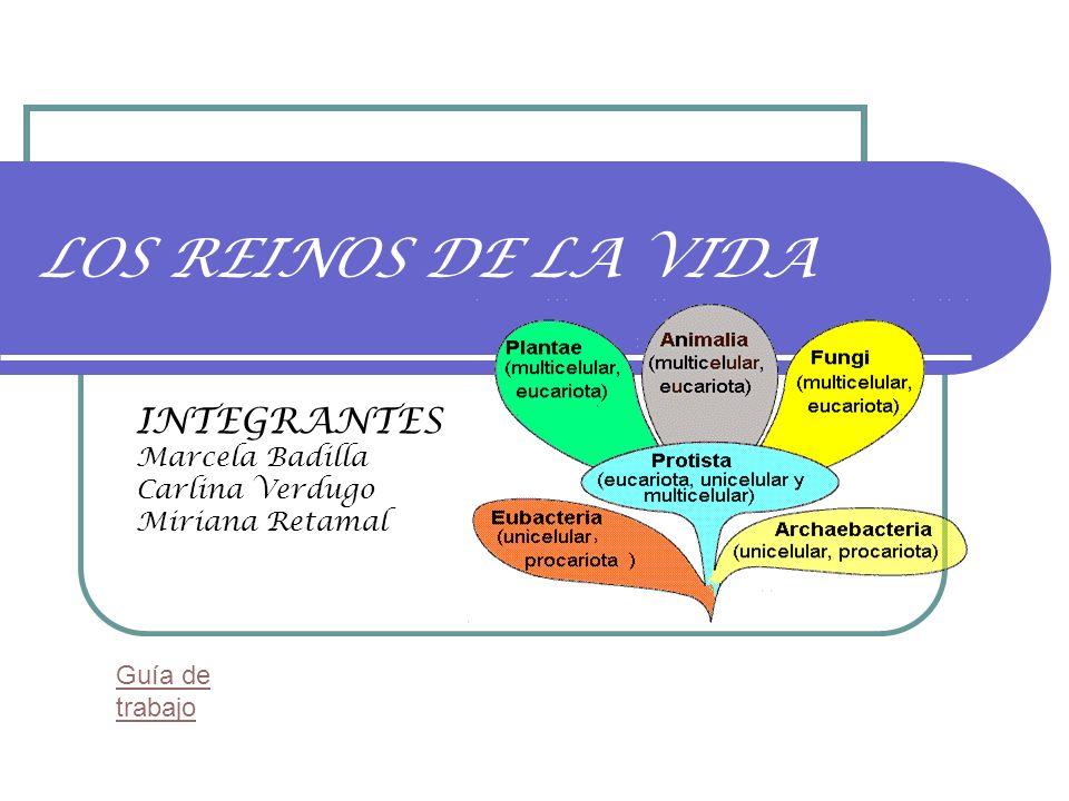 INTEGRANTES Marcela Badilla Carlina Verdugo Miriana Retamal