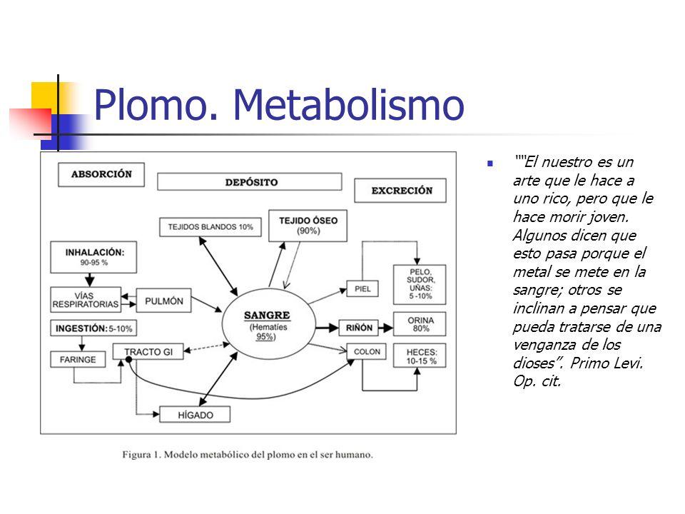 Plomo. Metabolismo