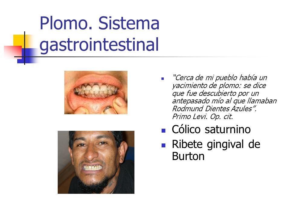 Plomo. Sistema gastrointestinal