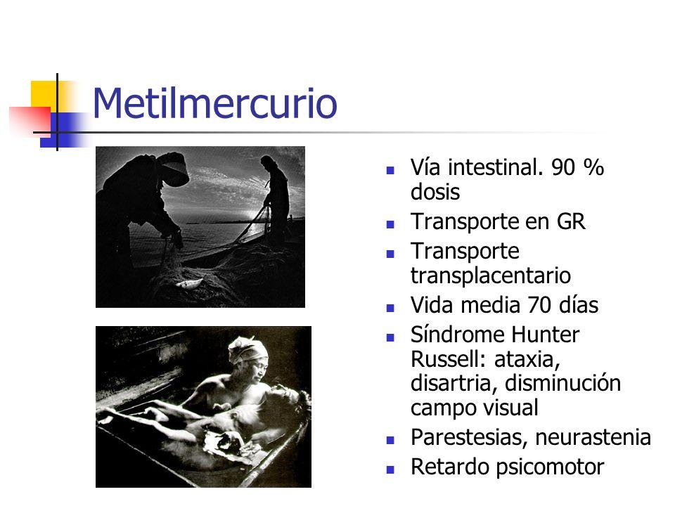 Metilmercurio Vía intestinal. 90 % dosis Transporte en GR