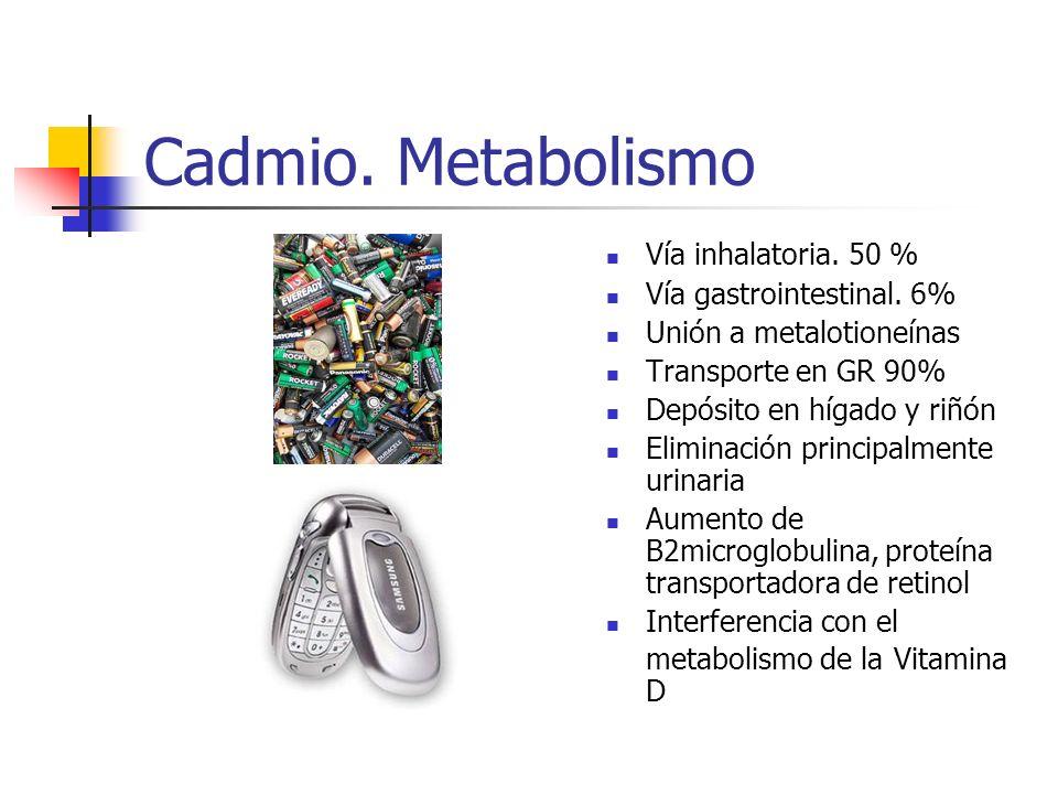 Cadmio. Metabolismo Vía inhalatoria. 50 % Vía gastrointestinal. 6%