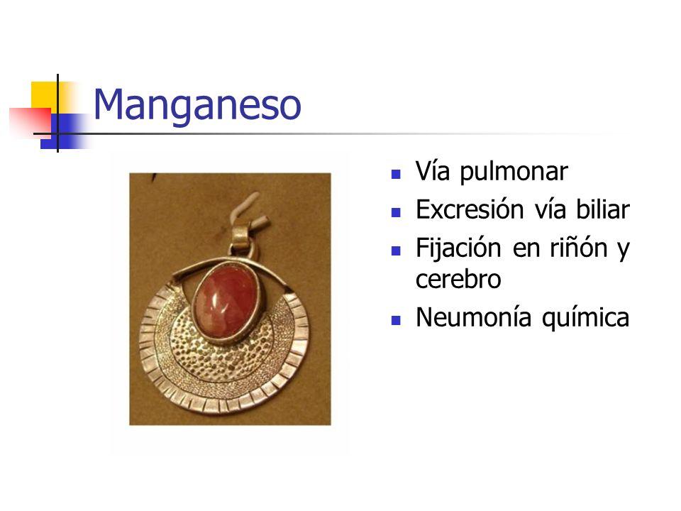 Manganeso Vía pulmonar Excresión vía biliar