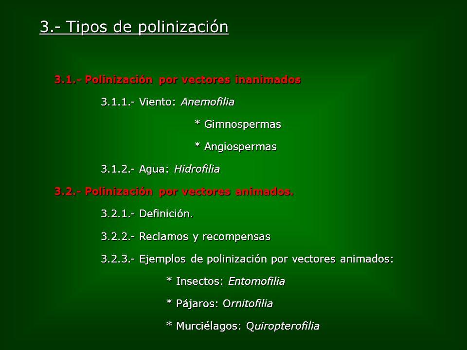 3.- Tipos de polinización