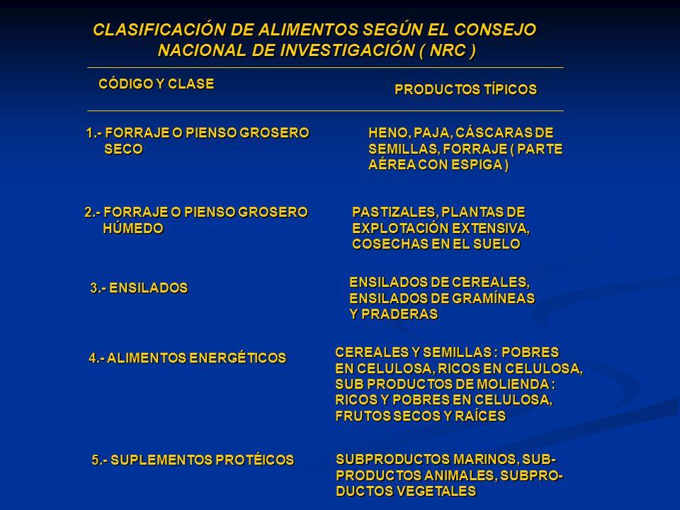 CLASIFICACIÓN DE ALIMENTOS SEGÚN EL CONSEJO