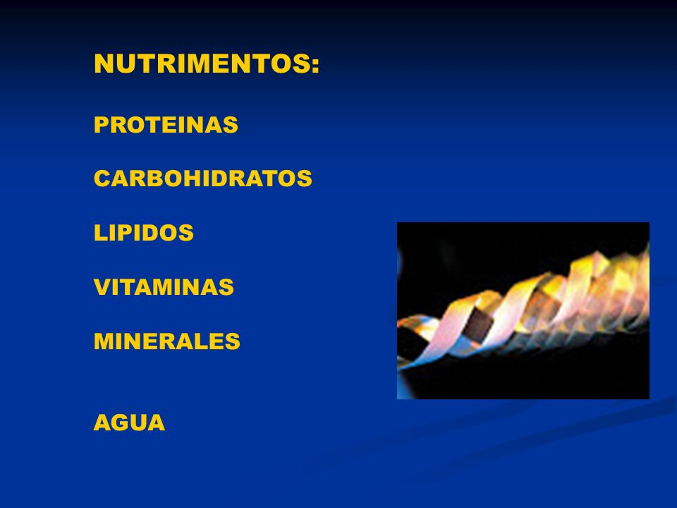 NUTRIMENTOS: PROTEINAS CARBOHIDRATOS LIPIDOS VITAMINAS MINERALES AGUA