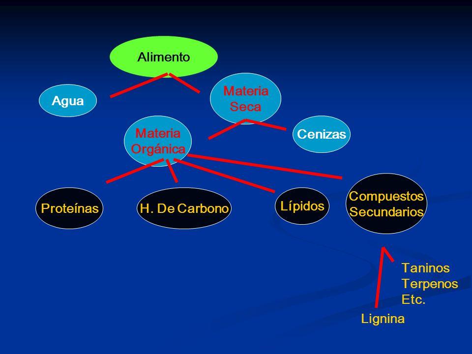 Alimento Materia. Seca. Agua. Materia. Orgánica. Cenizas. Lignina. Taninos. Terpenos. Etc.