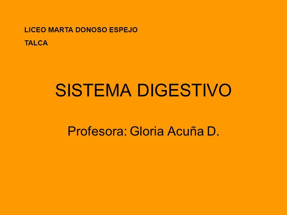 Profesora: Gloria Acuña D.