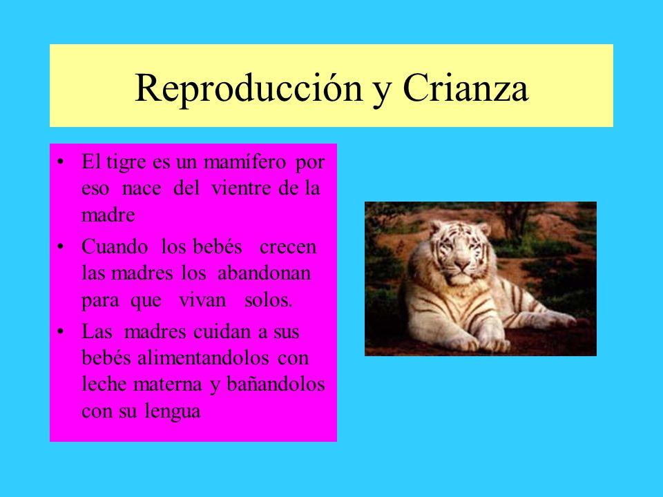 Reproducción y Crianza