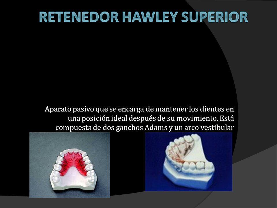 Retenedor Hawley Superior