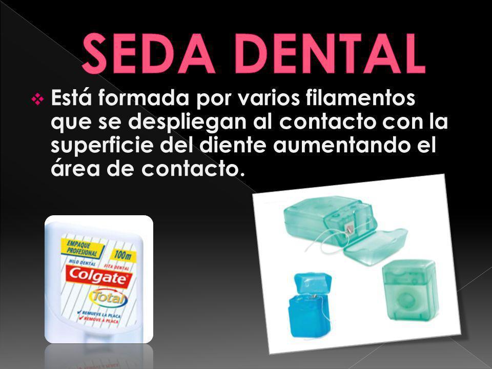 SEDA DENTAL Está formada por varios filamentos que se despliegan al contacto con la superficie del diente aumentando el área de contacto.