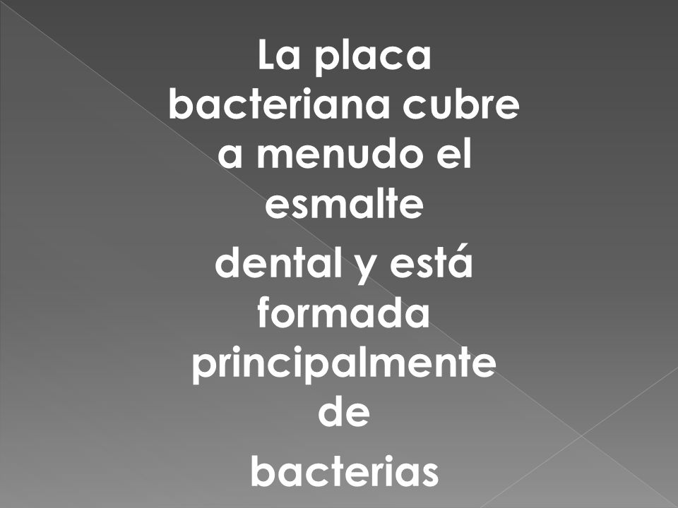 La placa bacteriana cubre a menudo el esmalte dental y está formada principalmente de bacterias