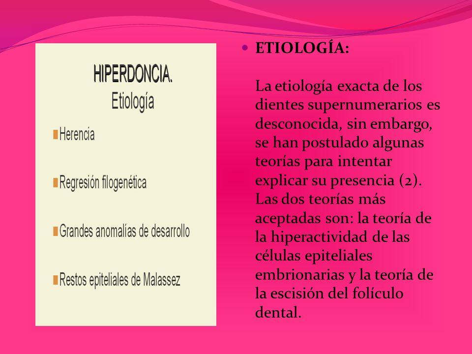 ETIOLOGÍA: La etiología exacta de los dientes supernumerarios es desconocida, sin embargo, se han postulado algunas teorías para intentar explicar su presencia (2).