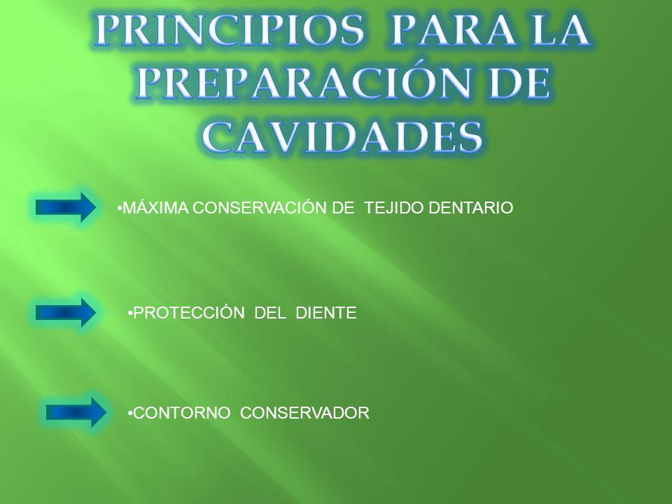 PRINCIPIOS PARA LA PREPARACIÓN DE CAVIDADES