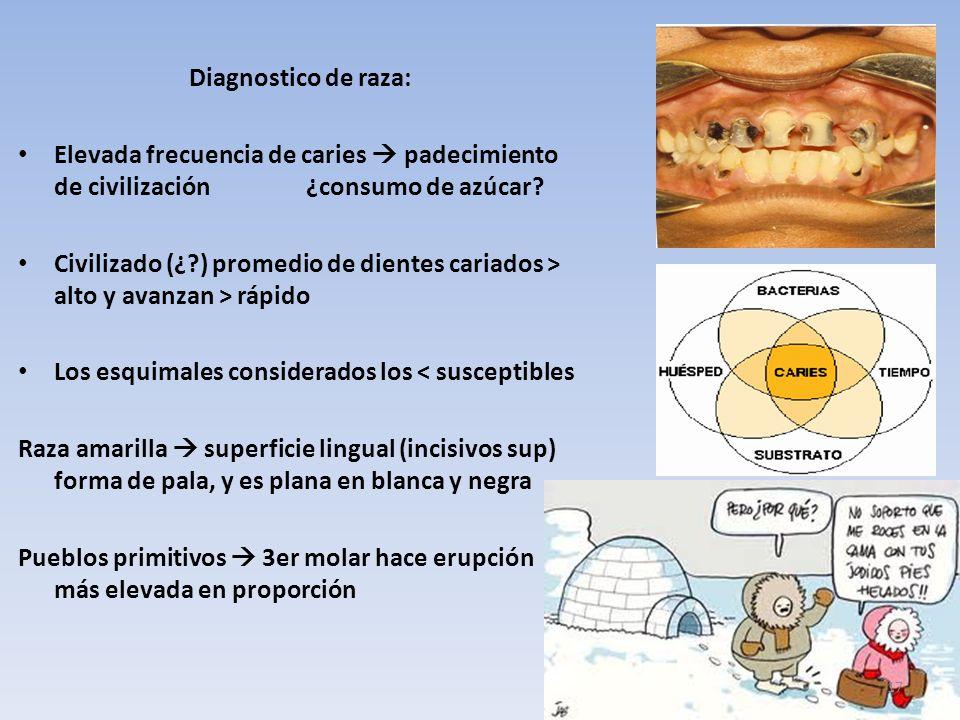 Diagnostico de raza: Elevada frecuencia de caries  padecimiento de civilización ¿consumo de azúcar