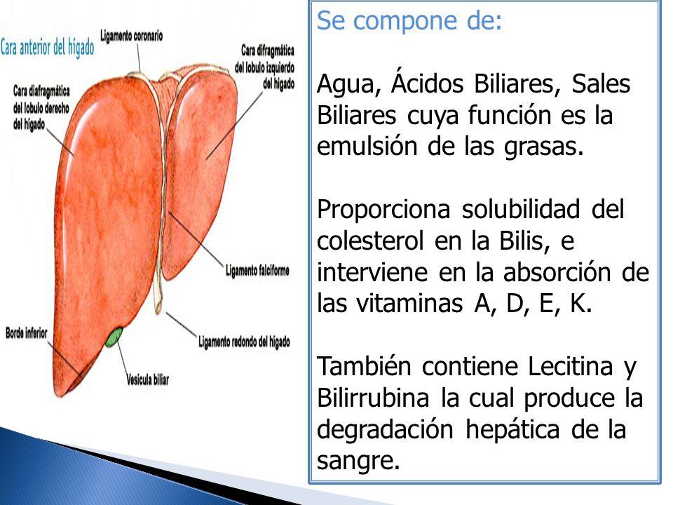 Se compone de: Agua, Ácidos Biliares, Sales Biliares cuya función es la emulsión de las grasas.