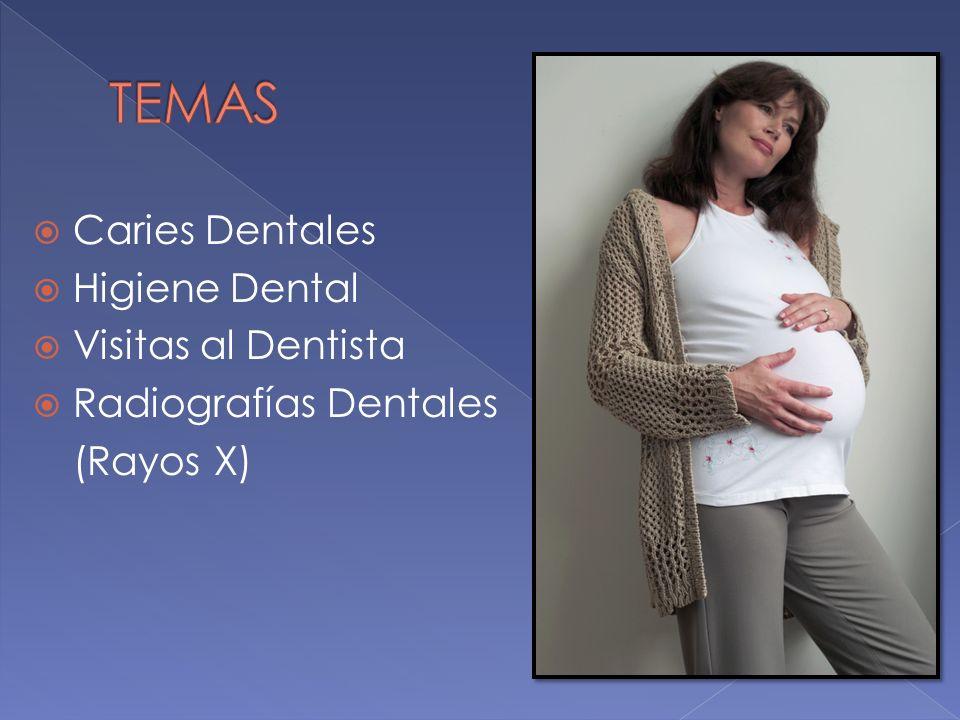 TEMAS Caries Dentales Higiene Dental Visitas al Dentista