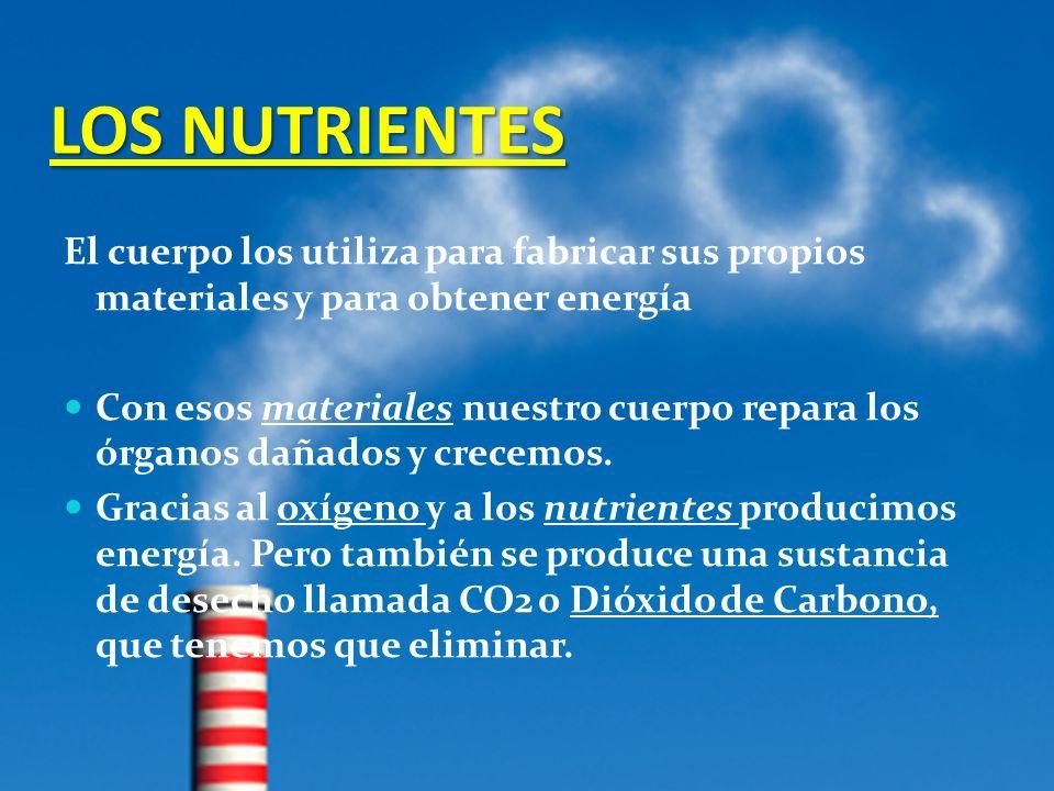 LOS NUTRIENTES El cuerpo los utiliza para fabricar sus propios materiales y para obtener energía.