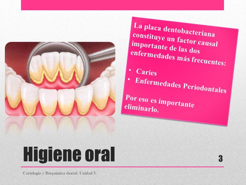 La placa dentobacteriana constituye un factor causal importante de las dos enfermedades más frecuentes: