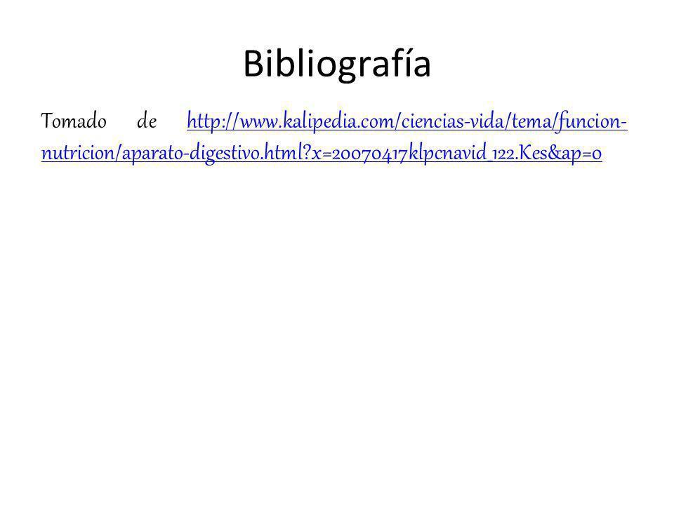 Bibliografía Tomado de http://www.kalipedia.com/ciencias-vida/tema/funcion-nutricion/aparato-digestivo.html x=20070417klpcnavid_122.Kes&ap=0.