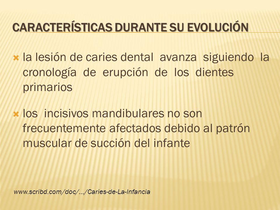 Características durante su evolución