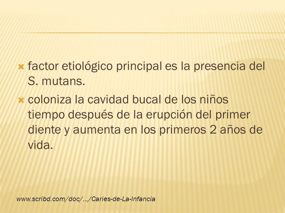 factor etiológico principal es la presencia del S. mutans.