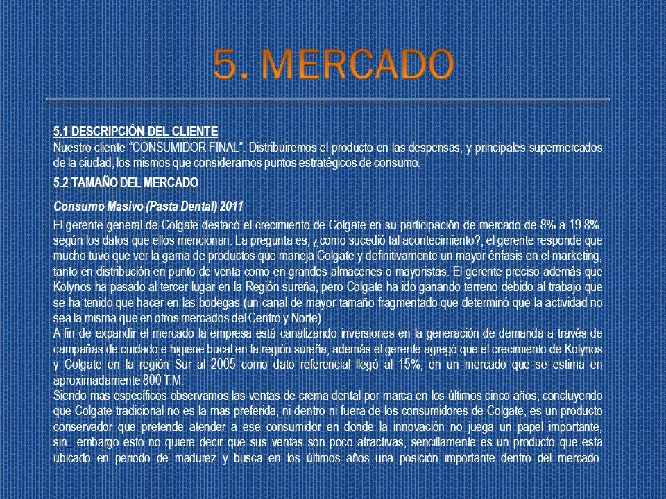 5. MERCADO 5.1 DESCRIPCIÓN DEL CLIENTE