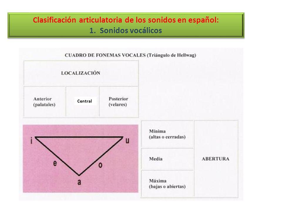 Clasificación articulatoria de los sonidos en español: 1