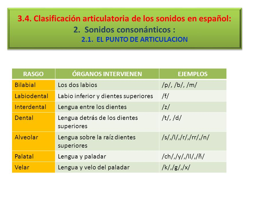 2.1. EL PUNTO DE ARTICULACION