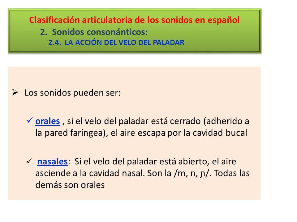 Clasificación articulatoria de los sonidos en español