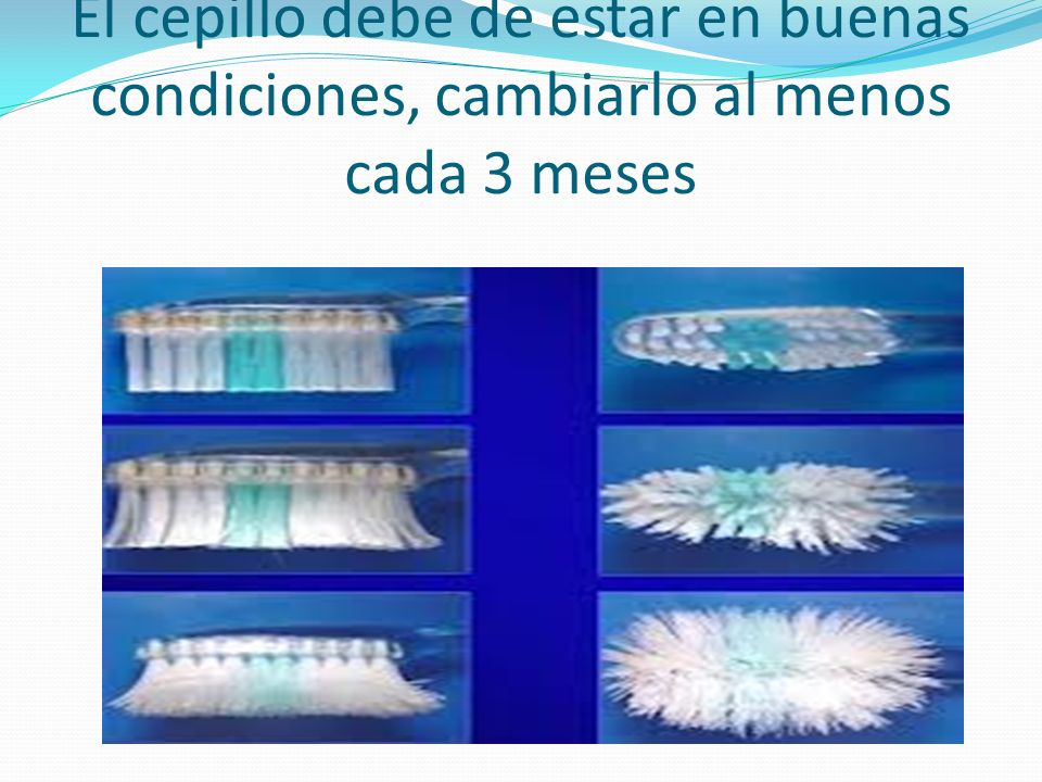 El cepillo debe de estar en buenas condiciones, cambiarlo al menos cada 3 meses