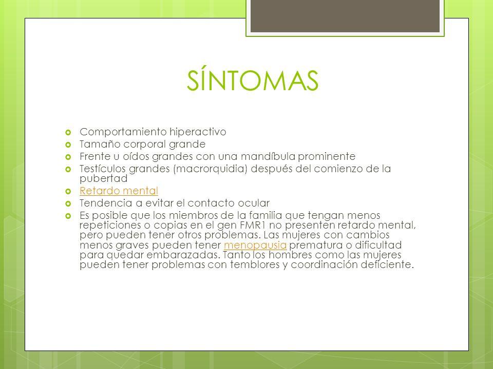 SÍNTOMAS Comportamiento hiperactivo Tamaño corporal grande