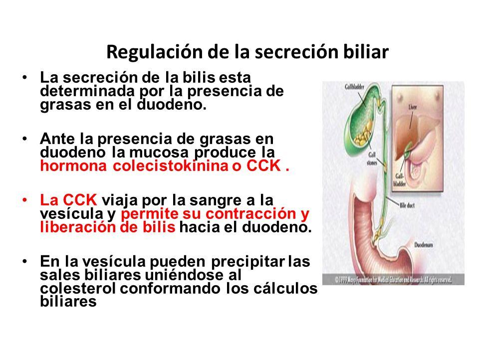 Regulación de la secreción biliar