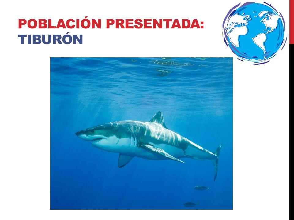 Población PRESENTADA: tiburón