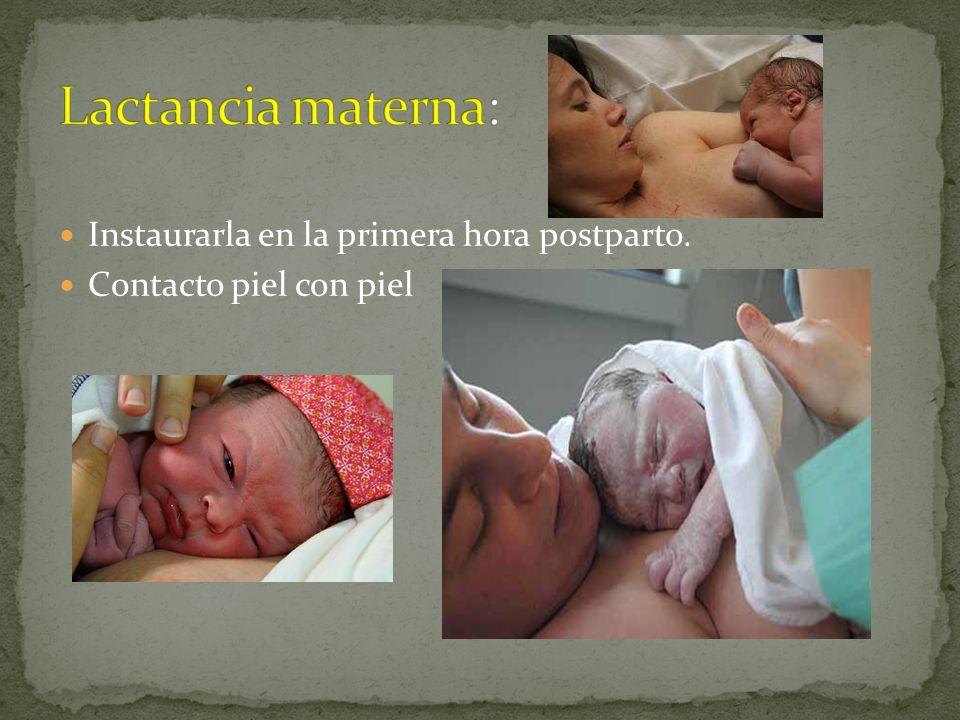 Lactancia materna: Instaurarla en la primera hora postparto.