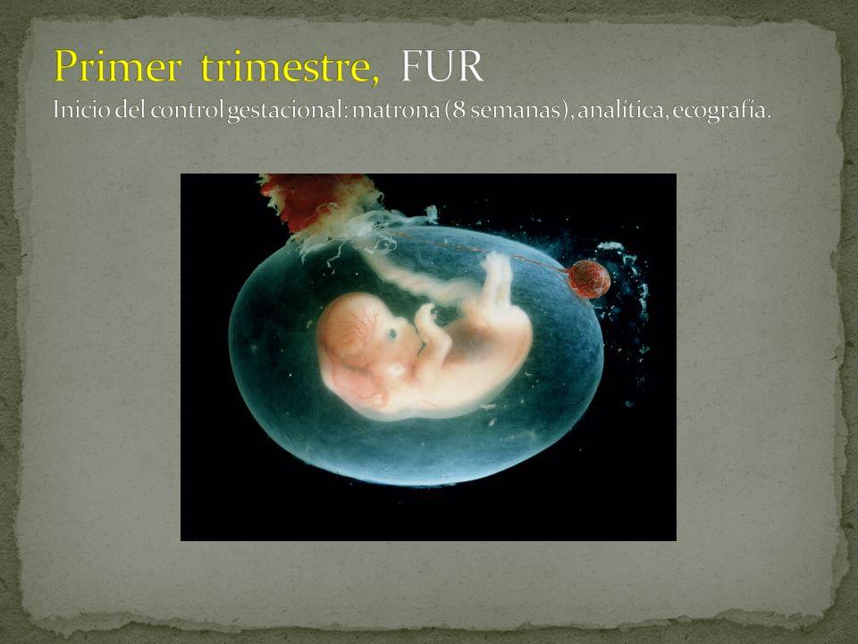 Primer trimestre, FUR Inicio del control gestacional: matrona (8 semanas), analítica, ecografía.