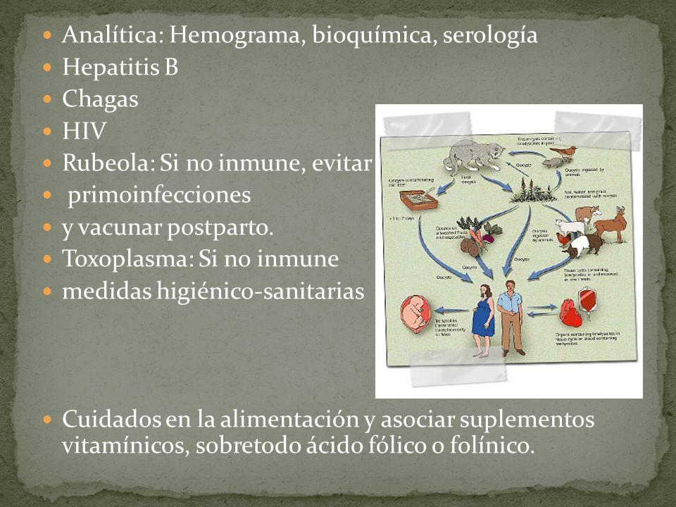 Analítica: Hemograma, bioquímica, serología