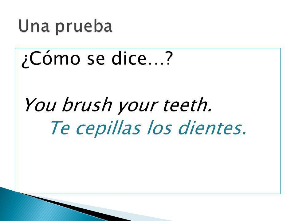 Te cepillas los dientes.