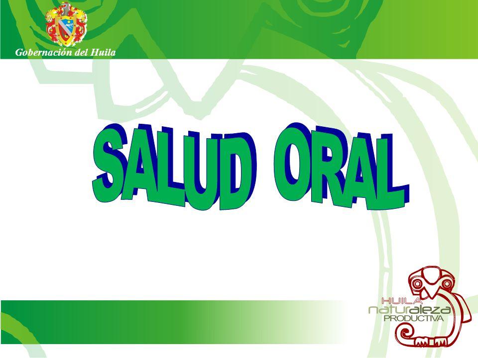 Gobernación del Huila SALUD ORAL