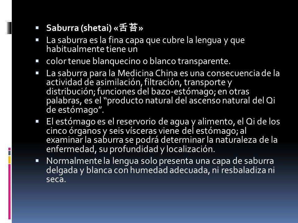 Saburra (shetai) «舌苔» La saburra es la fina capa que cubre la lengua y que habitualmente tiene un.
